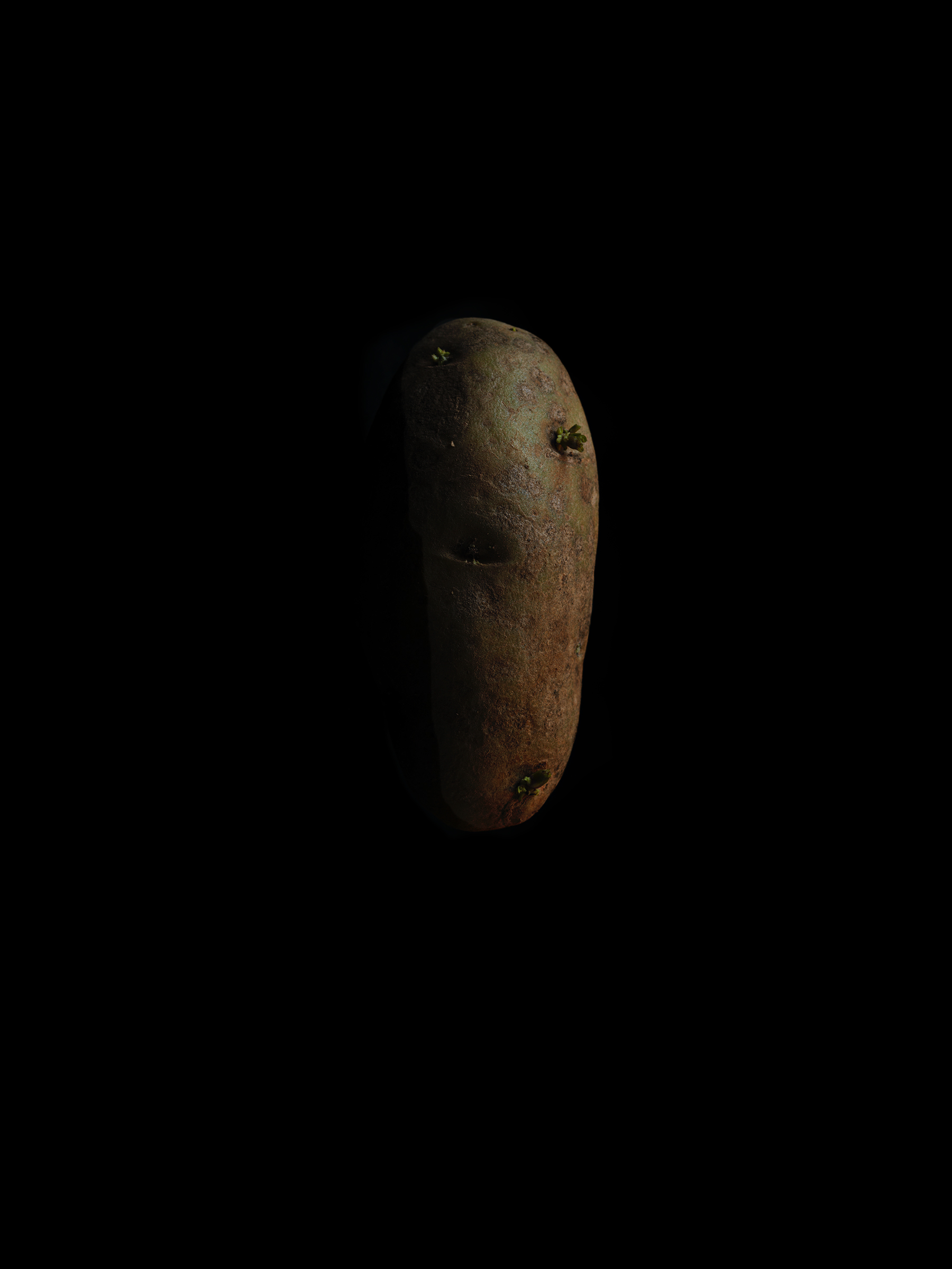 Potato-Best-fine-art-Gallery-Photographer-New-Mexico-NM-Santa-Fe-Taos-California-Bay-Area-LA-Santa-Monica-Moma-Met-NYC-NY-Danziger-Boghosian-Gallery-Chelseacopy