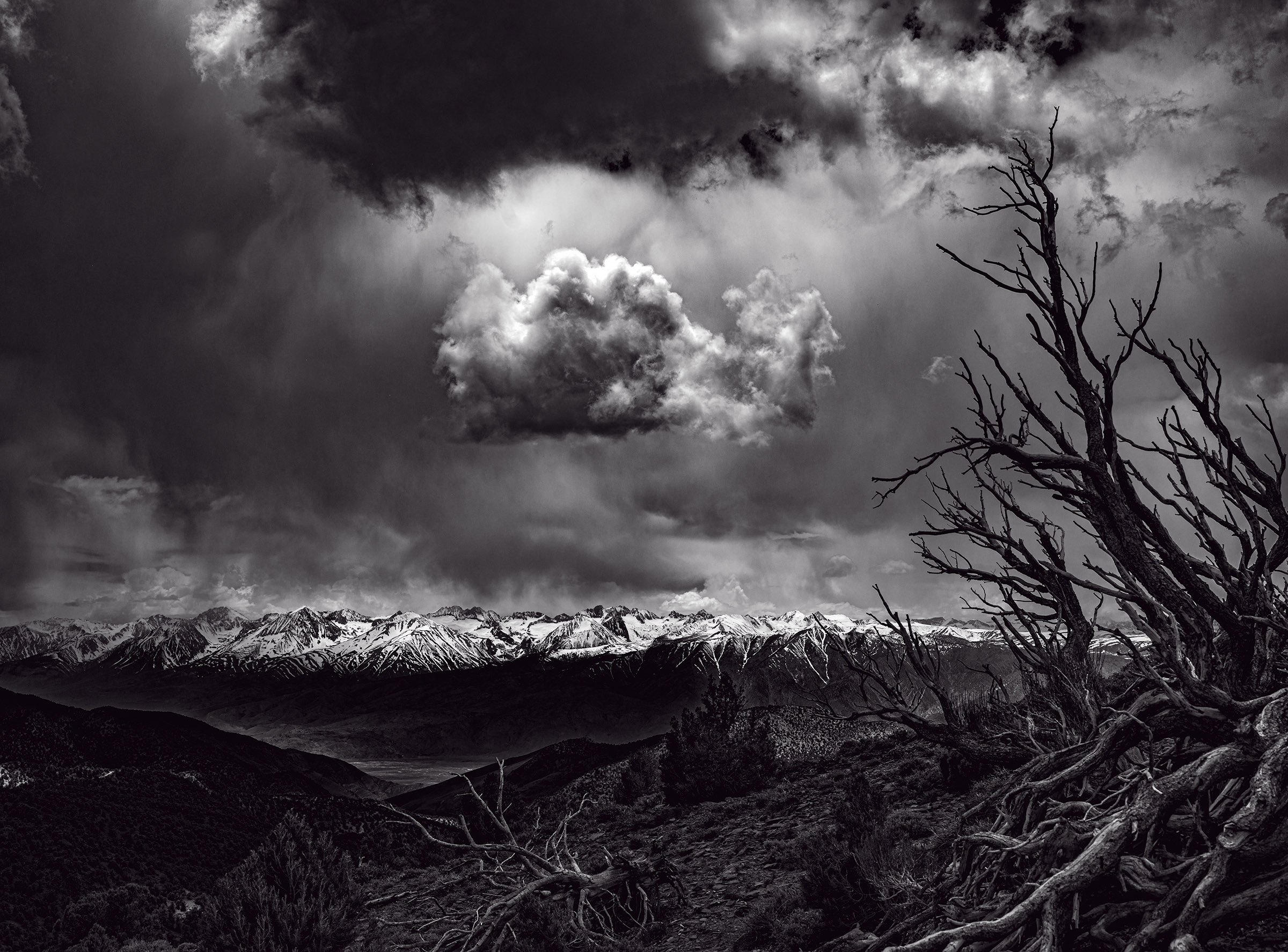 Mt Whitney, Sierras, from Bristlecone Pine Forest, White Mountains, Wick Beavers Photographer